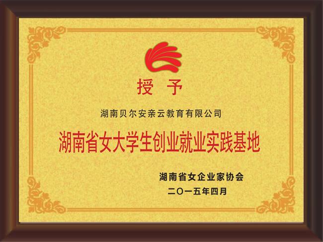 湖南省女大学生创业就业实践基地证书